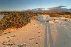 Morgensonne und Kalksand