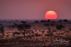 Abendfarben der Kalahari